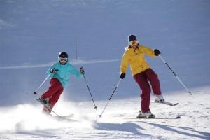 Agility ski training