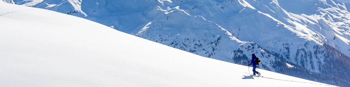 ski-parralax-3